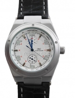 IWC Ingenieur Automatic Replica Watch
